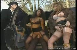 Bella figona fa la prostituta e un ricco se la scopa